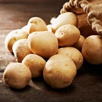 포슬포슬한 감자 5kg(특)