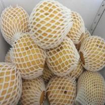 (인빌푸드)낙안배(신고배-가정용) 7.5kg/9-10과