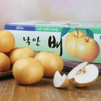 (인빌푸드)18년산 낙안배(신고배) 7.5kg(9-10과)