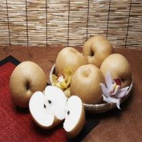 (인빌푸드)나주 배꽃 신고배 7.5kg(9~10과)