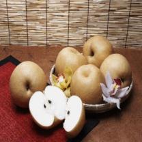 (인빌푸드)나주 배꽃 신고배 15kg(16과내외)