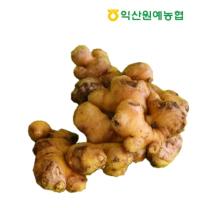 [익산원예농협/산지직송] 국산 생강 1kg