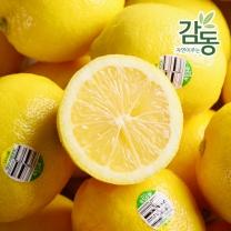 정품 펜시 레몬 40과 중과(개당중량 100g내외)