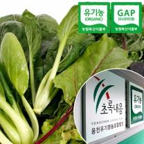 [초록내음] 충북충주 산지직송 GAP인증 유기농 쌈채소 600g