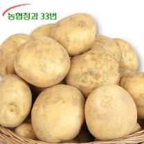 [농협청과33번] 감자 5kg (중)-가정실속형/쩌먹기 좋은크기