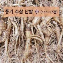 (인빌푸드)풍기수삼 난발 소 4-5년근 750g/11-17편