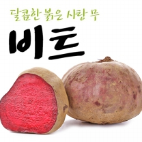 [익산원예농협/산지직송] 비트 5kg