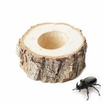 [바보사랑]국산 곤충 먹이접시 1구 - (장수풍뎅이 먹이그릇)