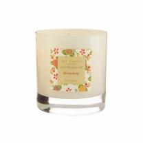 [바보사랑][콜로니 정품] 쥴리도스워스 캔들글라스 오처드 로드 - Wax Lyrical JD Candle Glass Orchard rd.