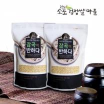 (인빌푸드)18년산 진도 찰보리쌀 5kg(1kgX5)