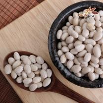 [넛츠피아] 캐나다 흰강낭콩(네이비빈) 1kg X 2봉
