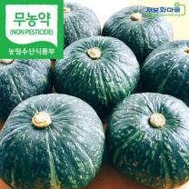 (인빌푸드)밤맛이 좋은 초대리 밤호박 10kg(5~10수)