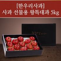 한우리 선물용 사과세트 5kg(10~13과)