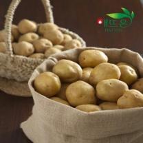 해뜨온 감자 3kg/대(작은계란크기)/산지직송