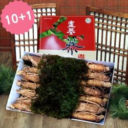 [풍기인삼] 5년근 수삼 1채 500g (10-13뿌리)