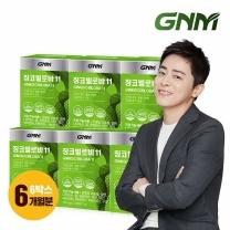 GNM자연의품격 징코빌로바11 6박스 (총 6개월분)