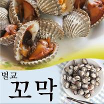 보성 벌교여자만 새꼬막 1.5kg (상품)/산지직송