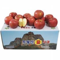 (인빌푸드)청송 주왕산 꿀사과(부사) 8kg/26-28과