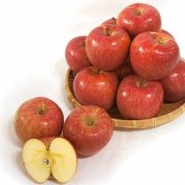 (인빌푸드)청송 주왕산 꿀사과(부사) 8kg/22-24과