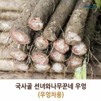 (인빌푸드)국사골선녀와나무꾼네 우엉(500원크기) 4kg