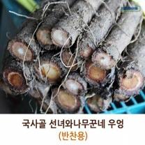 (인빌푸드)국사골선녀와나무꾼네 우엉(100원크기) 4kg