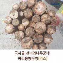 (인빌푸드)선녀와나무꾼네 우엉(짜리몽땅) 4kg(기스)