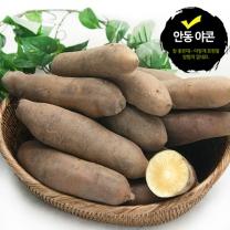 [광진농산] 자연이 만들어낸 안동 야콘 中품 5kg