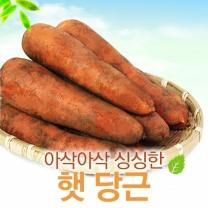 [농협청과33번] 아삭아삭 당근 5kg/즙용