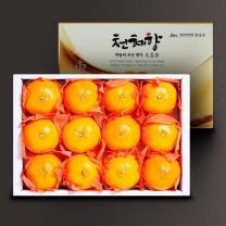 [아리알찬]제주명품 천혜향 3kg(13과내)