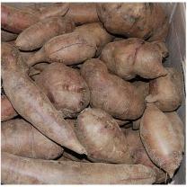 (인빌푸드)달달하고 시원한 맛 황둔마을 야콘 10kg