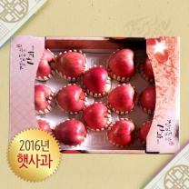 아산맑은 사과 5kg 16과 내외 선물세트