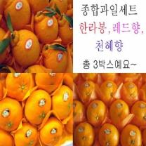 (인빌푸드)로하스봉향향SET 15kg한라봉,레드향,천혜향
