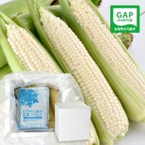 [우수농산물인증]냉동 백초당옥수수 15개(정품)