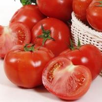 참살림 완숙토마토 3kg(3~4번과)