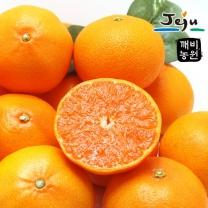 [깨비농원] 천혜향(중) 1kg (4~5과)
