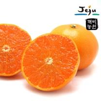 [깨비농원] 천혜향(중) 2kg (8~11과)