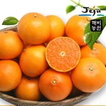 [깨비농원] 천혜향(중) 4.5kg (18~25과)
