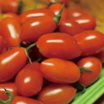 [가락24]아삭아삭한 대추 방울토마토 3kg
