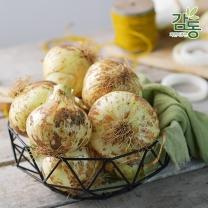 2018년 아삭아삭 햇양파 5kg 특/요리용