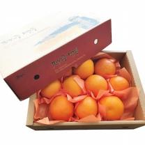 (인빌푸드)제주 올레향 블러드오렌지 2kg(8~13과)
