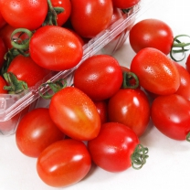 천일농산 부여 대추방울토마토 5kg(3번)