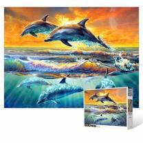 [바보사랑]1000피스 직소퍼즐 / 돌고래의 바다