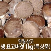 (인빌푸드)영월 생표고버섯 1kg