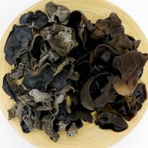 경기 화성 허남환님의 무농약 생 목이버섯 건 목이버섯