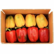 (인빌푸드)섬진강 파프리카 3kg(16~18개)
