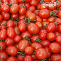 (인빌푸드)술빛愛 대추방울토마토 5kg