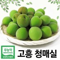 [푸른들] 무농약 전남고흥 청매실 10kg (중/25mm내외)