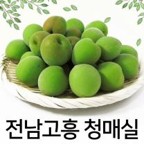 [푸른들] 무농약 전남고흥 청매실 10kg (왕특/34mm내외)