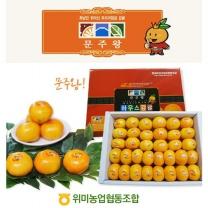 [위미농협/산지직송] 문주왕 하우스감귤 1.5kg(박스당 30과 이내) * 3박스
