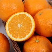 에프엠 고당도 오렌지 2.1kg(대과 / 개당 210g)